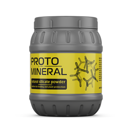 Protomineral